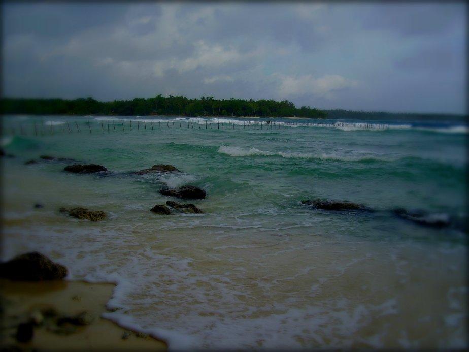 © Tangata O Te Moana Nui   (2)